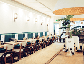 Wise workplace Teds Amsterdam